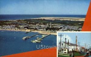 Provincetown Shoreline Cape Cod MA Unused