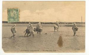 Traversee d'Un Oued, Paysages Sahariens, Africa, 1900-1910s
