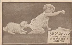 Humour For Sale Dog Shows Great Attachment To Children 1911