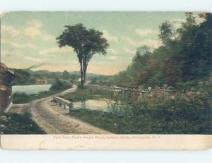Corner Wear Pre-1907 NATURE Middleville By Newport & Fairfield by Utica NY A1446