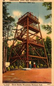 Tennessee Smoky Mountains Observation Tower Atop Clingman's Dome