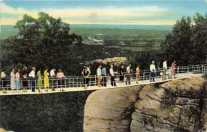 Rock City Tennessee~Swing Along Bridge in Rock Gardens~Lookout Mountain~1963