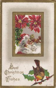 Best Christmas Wishes, Santa Claus under Poinsettias, Sparrow bird percjed on...
