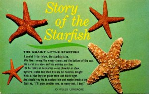 Story Of The Starfish