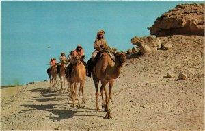 PC CPA BAHRAIN, BAHREIN, CAMEL CARAVAN, Modern Postcard (B3760)