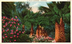 A Palm Garden, Arizona, AZ, 1938 White Border Antique Vintage Postcard f5161