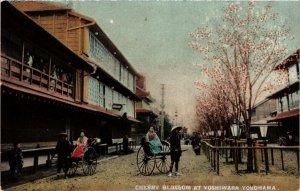 PC CPA YOKOHAMA Yoshiwara Cherry blossom JAPAN (a12309)