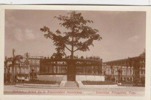 RP: HAVANA , Cuba , 00-10s ; American Fraternity Tree