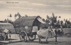 CEYLON , 00-10s ; Bullock Cart
