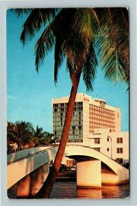 Miami FL- Florida, Miami Beach Seville Hotel Tropical Palms Chrome c1963Postcard