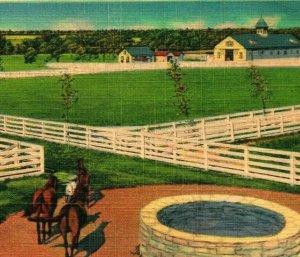 Blue Grass Stock Farm In Old Kentucky Horses Well UNP Vtg Linen Postcard