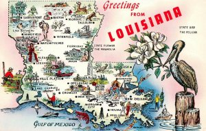 LPM55 Louisiana Map Chrome Postcard Pelican State