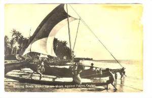 RP; Fishing Boats drawn up on shore aganist Palms, Ceylon, Sri Lanka, 00-10s