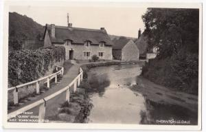 Yorkshire; Thornton Le Dale, View Along Thornton Beck RP PPC, 1956 York PMK