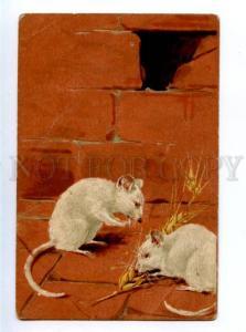 156593 White MOUSE Mice w/ rye Vintage PFB Embossed PC