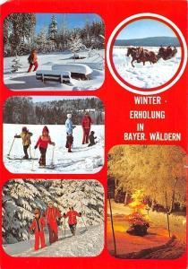Winter Erholung in Bayern Waeldern Skiers Winter Horse Sleigh