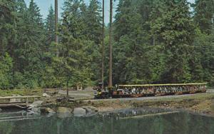 Miniature Train, Stanley Park , Vancouver , B.C. , Canada,  50-60s