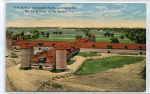 Milk Stables Barn Elmendorf Dairy Farm Lexington Kentucky 1910s postcard