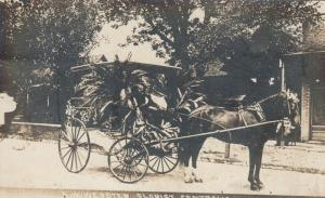 RP: CENTRALIA , Illinois , 00-10s ; A.W. Webster , Florist, Horse Drawn Wagon