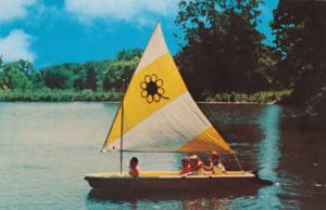 Sunflower Sailboat at Sky Ranch Camp - Princeville IL, Illinois