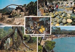 MALLORCA, Islas Baleares, Spain, 1950-1960s; Various Views Of Mollorca Island