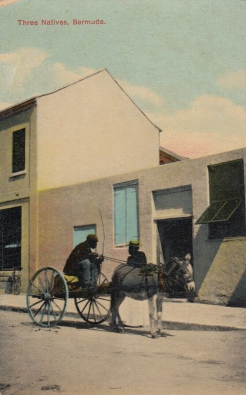 Bermuda , 00-10s ; Three Natives (Donkey Cart)