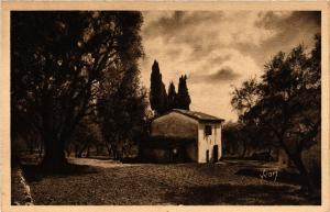 CPA Grasse - Oliviers et Cypres (639415)