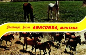 Montana Greetings From Anaconda