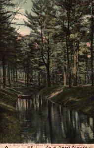 Manchester, NH, Pine Island Park, A Shady Nook, 1907 Vintage Postcard g8519
