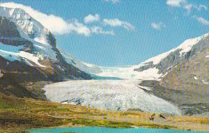 Canada Alberta Banff Columbia Ice Fields