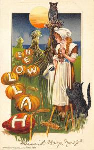 Halloween Young Woman Black Cat Pumpkin Parade Owl Embossed Postcard