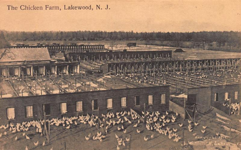 The Chicken Farm, Lakewood, New Jersey, Early Postcard, Unused