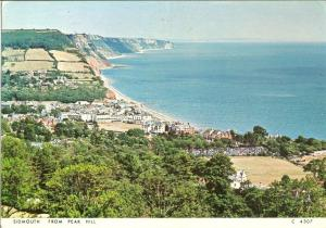 UK, Sidmouth from Peak Hill, used Postcard