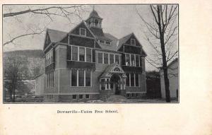 Downsville New York Union Free School Street View Antique Postcard K94408