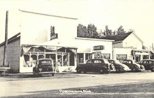 Roscommon Michigan~Storefronts along Lake Street~30s Cars~B&W Postcard