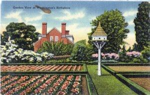Mt Vernon VA -  beautiful gardens at George Washington's home, 1930/40s