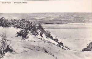 Maine Ogunquit Sand Dunes Albertype