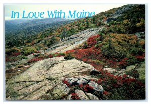 Postcard In Love With Maine Fall Atop Mt Cadillac, Maine ME K8
