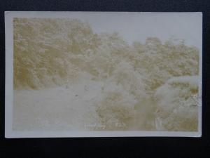 Cheshire Knutsford ASHLEY River Bollin shows People on bank c1906 RP Postcard