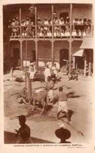 Lot142 real photo gurkhas sacrificing a buffalo on dusserah festival nepal