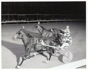 WINDSOR RACEWAY, Harness Horse Racing, KING DALLAS wins