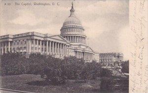 The Capitol Washington D C