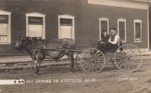 RP; STETTLER, Alberta, Canada, PU-1907; Out Driving, Cattle pulled wagon