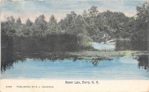 Derry New Hampshire~Lady & Her Dog Across From Lily Pond~1909 Vaughan