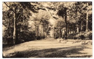 Chestnut Hill, Mass, The Old Roadway on the Grounds of the Sanatorium , RPPC
