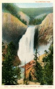 WY - Yellowstone National Park. Great Fall     (Haynes)