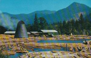 A Northwest Sawmill and Log Pond