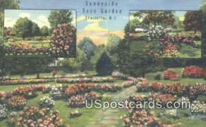 Sunnyside Rose Garden Charlotte NC Unused