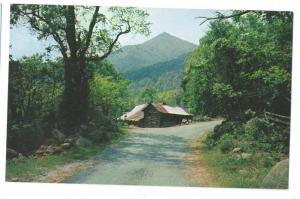 Blue Ridge Mountain Cabin Postcard