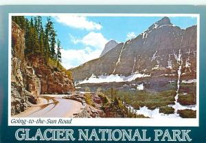 Glacier National Park Logan Pass Summit Going to Sun Road  Postcard  # 6967